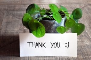 Thank You from Granite Liquidators